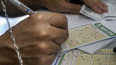 apostadores das loterias